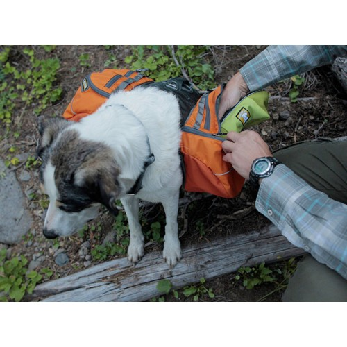 Ruffwear Approach Pack™