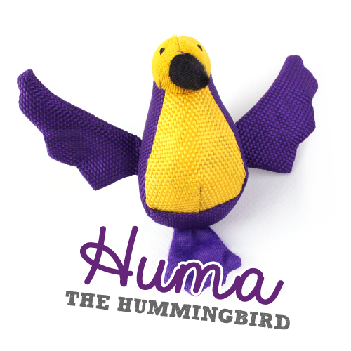 Beco Huma The HummigBird