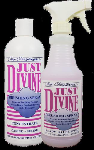 CC Just Divine