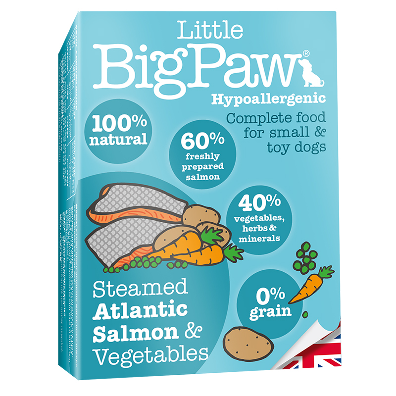 Little Big Paw - Salmon & Vegetable Terrine 150g